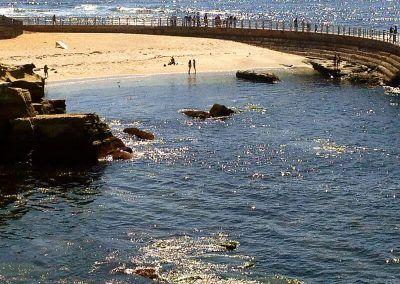 Childrens Pool - La Jolla California